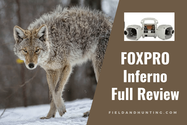 FOXPRO Inferno Review: best portable coyote call