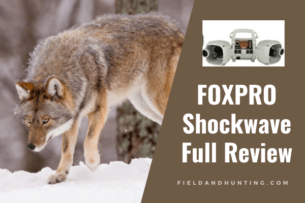 FOXPRO Shockwave review
