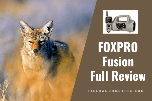 Foxpro Fusion Review: Best Coyote Call