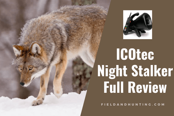 ICOtec night stalker review