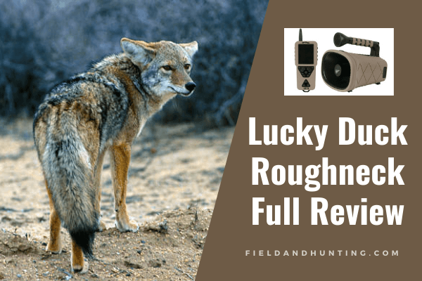Lucky Duck Roughneck review
